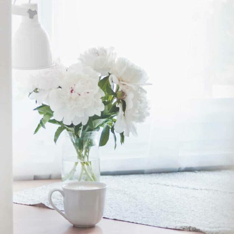 A white vase filled with white flowers sits on a table in a white room. A green houseplant sits next to it